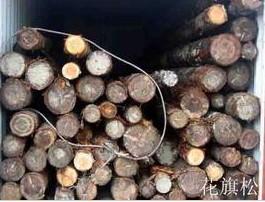 欧洲核桃木木材进口广州黄埔港报关清关代理公司